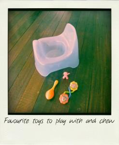 Potty+toys