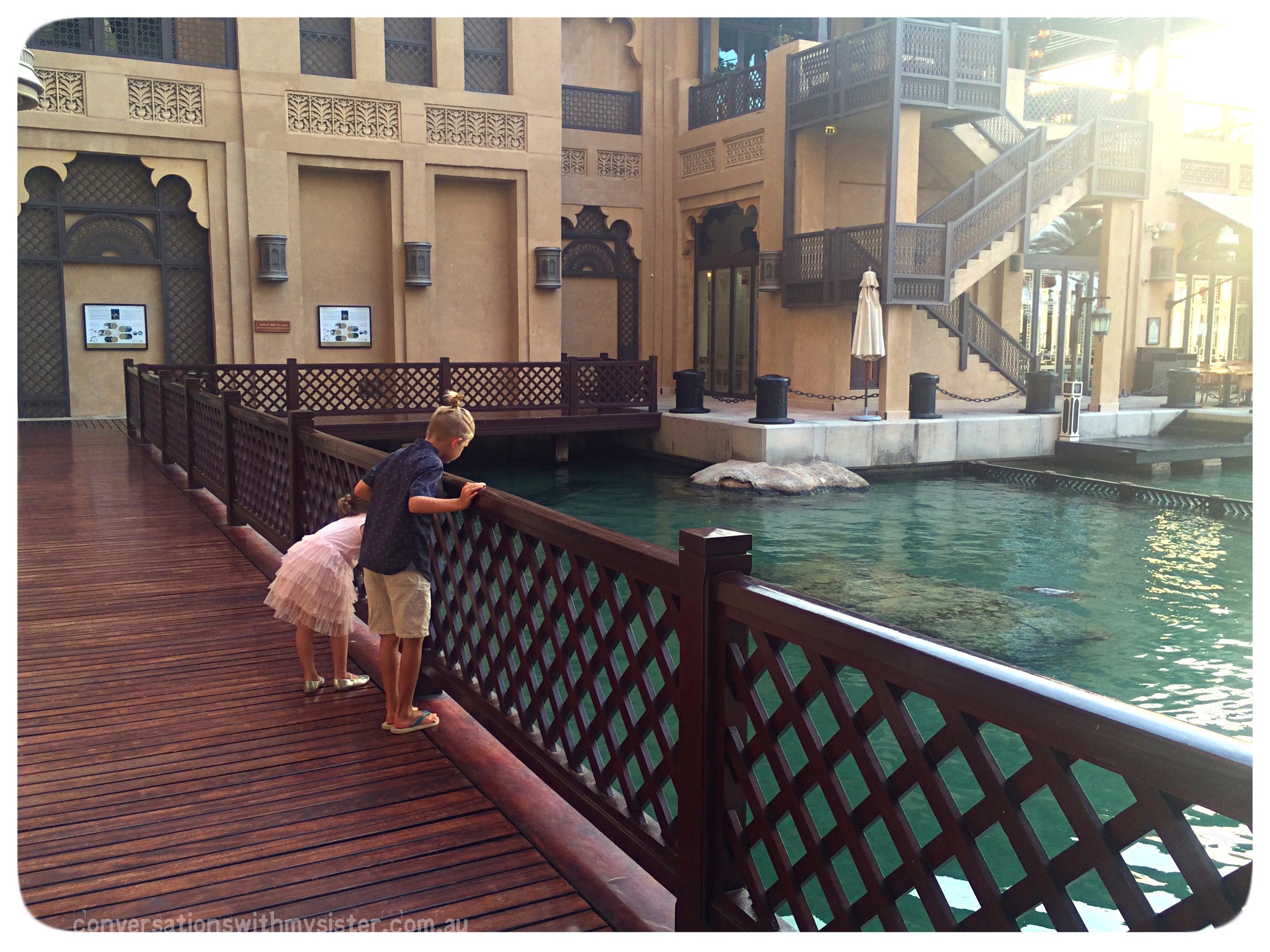 conversationswithmysister_madinat jumeirah_turtle rehabilitation project