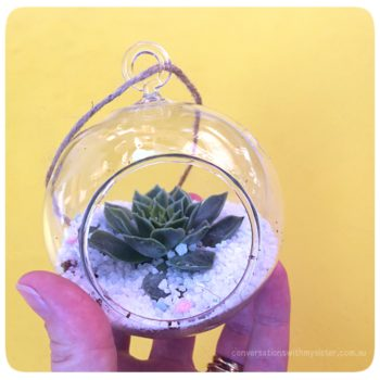 conversationswithmysister_make your own succulent terrarium
